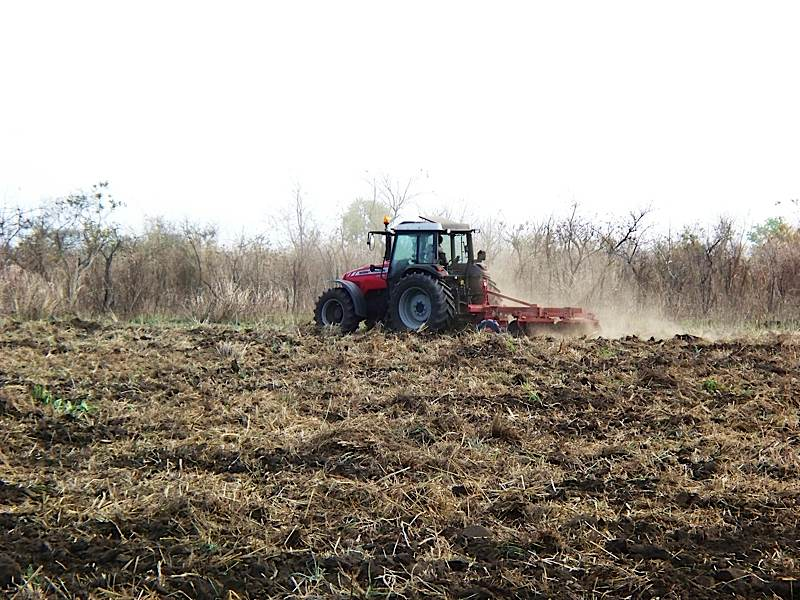 Field Preparation with Tractor on Loan from Harvesters