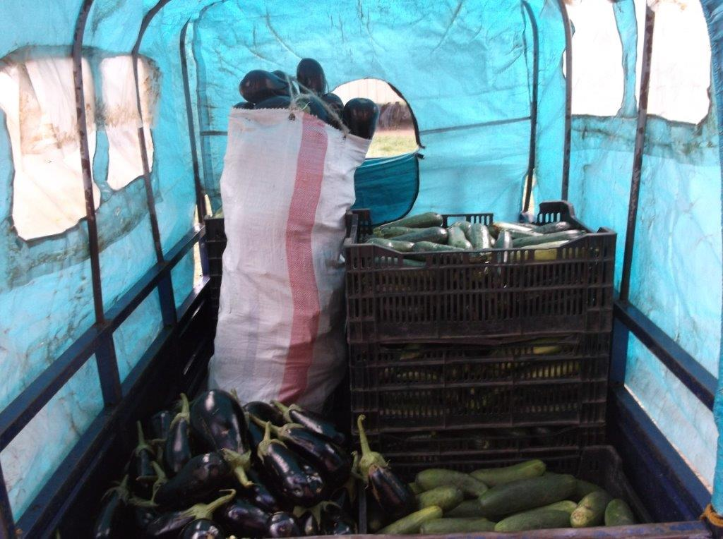 Vegetable Transport to Local Market