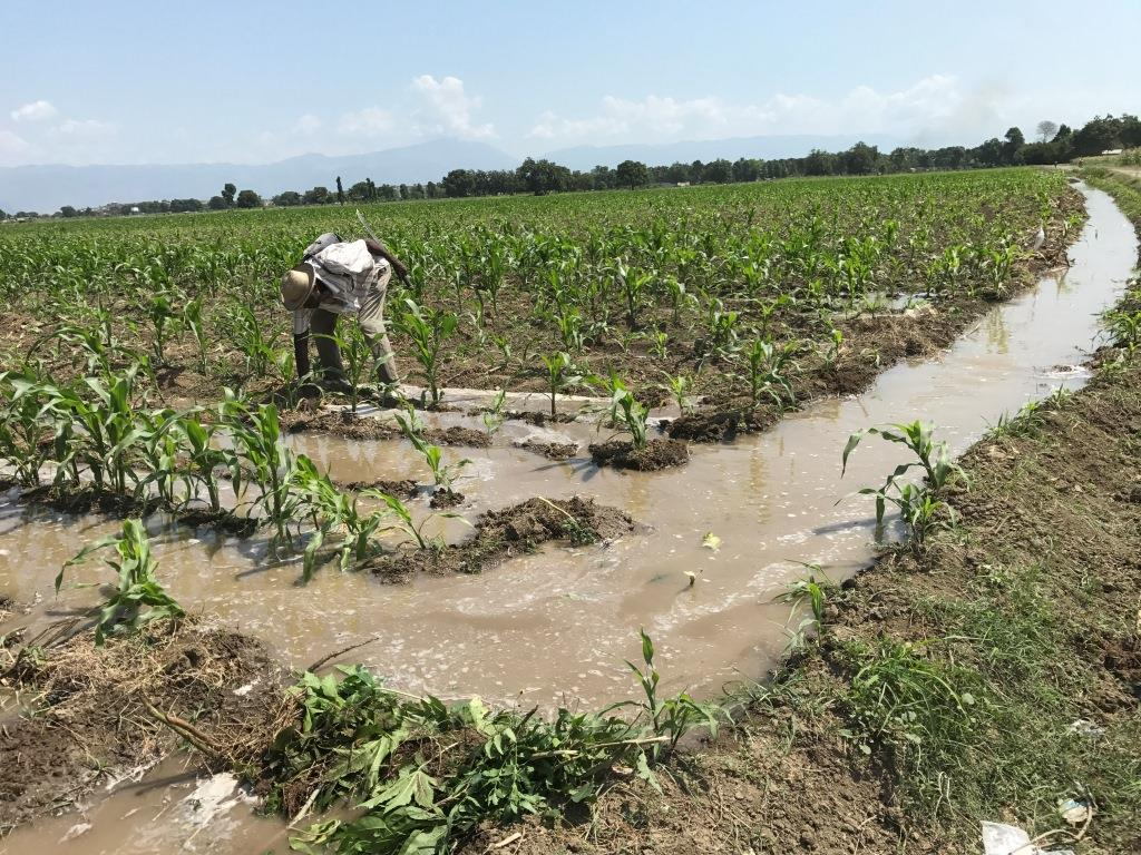 Well Water Irrigation For Corn Crop