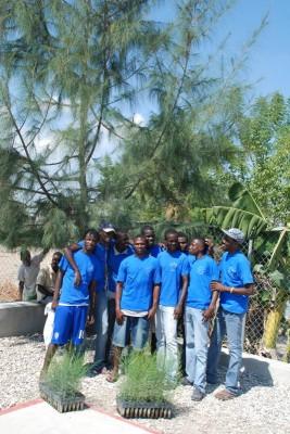 Reforestation in Haiti